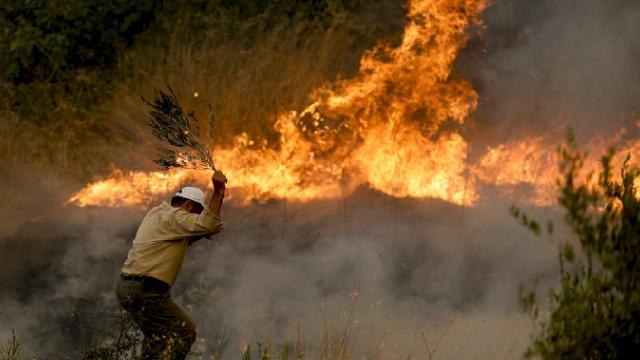 Manavgat'ta iki orman işçisi şehit oldu