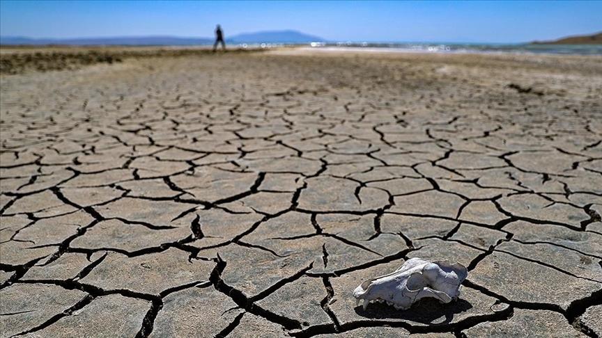 'İklim değişikliğiyle mücadele noktasında atılacak bu tarihi adımın hayırlar getirmesini temenni ediyorum'