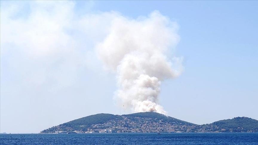 Heybeliada'da ormanlık alanda yangın çıktı
