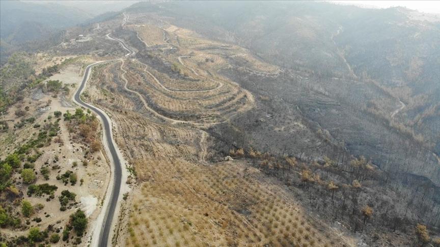 Yangında zarar gören alanlar havadan görüntülendi