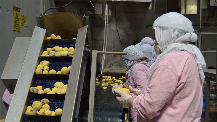 Türkiye'nin en büyük 500 sanayi kuruluşu listesine gıda firmaları damga vurdu