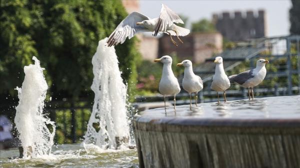 Türkiye 'Eyyam-ı bahur' sıcaklarının etkisi altına giriyor